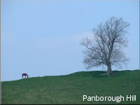 Panborough Hill
